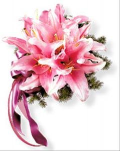 Mingfern Flowers on Oriental Lily Nosegay    Barstow Floral   Bridal